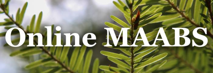 best-online-seminary-degrees-maabs