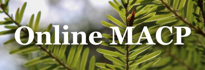 best-online-seminary-degrees-macp
