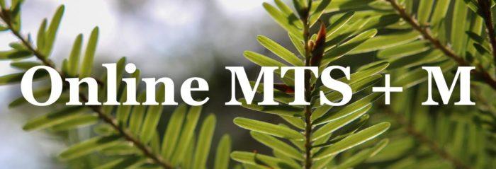 best-online-seminary-degrees-mtsm